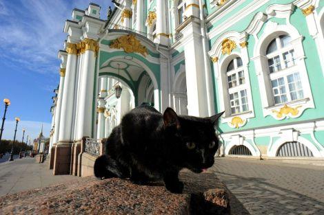 gatos-guardianes-Ermitage-obras-arte_LNCIMA20151104_0130_28